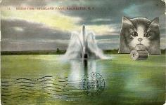 John Ashbery Reservoir Cat