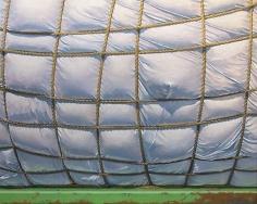 Rope 2005 egg tempera on panel