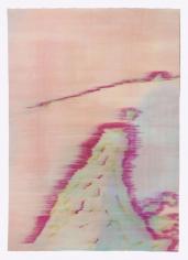 Lichen 9