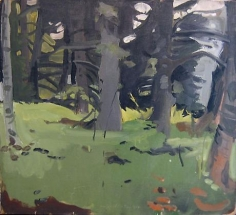 Spruce & Birch