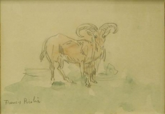 Chevre 1925-1927 watercolor and pencil on paper