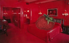 John Ashbery Strawberry Bed