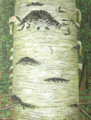 Ant 1996 oil on canvas