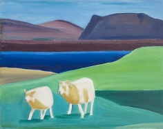 Two Sheep and Water