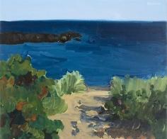 Path, Brace Cove