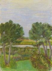 JANE FREILICHER Through the Pines