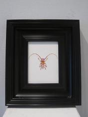 JON SHELTON Oscitant Enterprises, Bugmaker 2007, 12