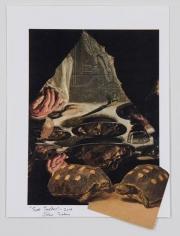 John Ashbery Two Turtles