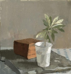 Olive Branch in a White Plastic Cup