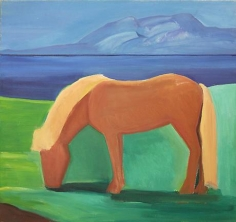 Icelandic Horse with Blond Mane