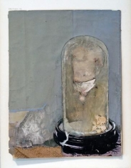 Untitled (Male Torso in Glass Cloche)