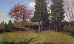 Chatwood Morning, Early Fall, 2014