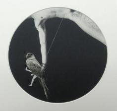 Swing 1973 paper, casein montage