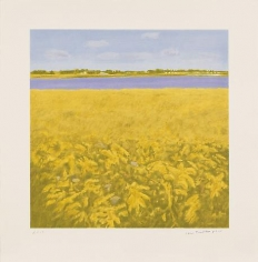 Goldenrod 2012 color lithograph