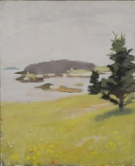 Bear Island with Spruces