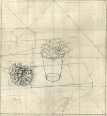 """Study for """"Succulent in a White Plastic Cup"""""""