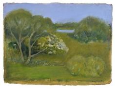 Garden Passage 2006