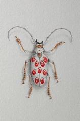 JON SHELTON Oscitant Enterprises, Bugmaker 2007, 18 (detail)