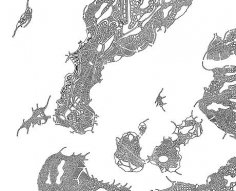 Florent Morellet Gated Archipelago (+30 feet) Local Warming Series