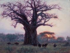 Baobab and Buffalo, 2016