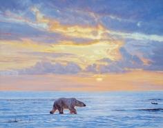 Polar Dawn, 2017