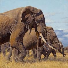 Giants of Kilimanjaro, 2016