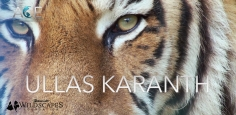 Banovich Wildscapes Foundation 2018 ACE Award for Conservation Excellence Nominee-Ullas Karanth, PhD