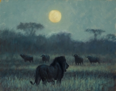 Under a Simba Moon, 2017