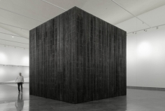 Iñigo Manglano-Ovalle: The Black Forest