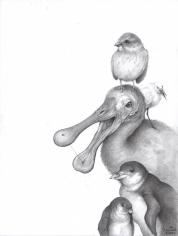 Adonna Khare (b. 1980) Spoonbill (Bird), 2015