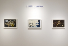 Installation view - Primordial Language: Small Works by William Scharf