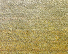 "Joan Vennum, Network, 2002, Oil on canvas, 24 x 29"""