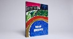 david hockney the thrill is spatial catalogue