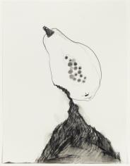 Valerie Piraino Southern Fruit (Black and Ripe), 2014 Graphite on paper