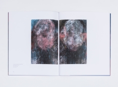 jim dine looking at the present primary objects richard gray 2017