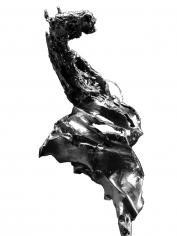 "Yann Normand ""Savage IX"" Galerie LeRoyer"