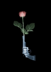Nick Veasey, Galerie LeRoyer