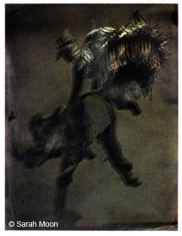 Le Tounesol, 2009, 15-3/4 x 19-1/2 Toned Silver Gelatin Photograh, Ed. 20