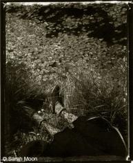 18 juillet, 1989, 15-3/4 x 19-1/2 Toned Silver Gelatin Photograh, Ed. 20