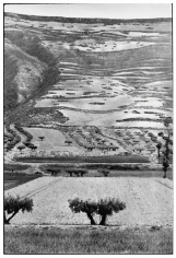 Castille, Spain, 1953, 14 x 11 Silver Gelatin Photograph