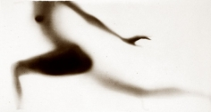 Osmosis, Untitled #0003441, 20 x 40 Silver Gelatin Photograph, Copper, and Glass, Ed. 10