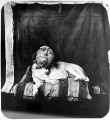 Dog On A Pillow, Marseilles, 1994