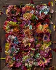 abelardo morell flowers for lisa 10