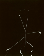 harry callahan aix en provence france