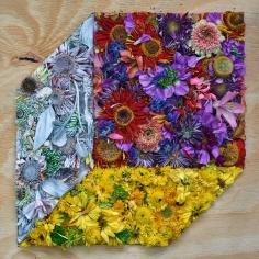 abelardo morell flowers for lisa #38