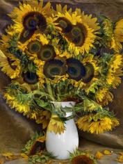 abelardo morell flowers for lisa 28