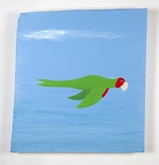 CHRIS JOHANSON Parrot painting #5