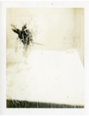 Laura Letinsky,  Untitled, 2002, from the series Time's Assignation, 2002,  Polaroid,  4 1/2h x 3 1/2w in, Unique, Photography