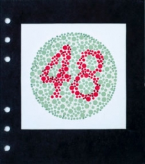 """Lydia See  Colorblindness Tests - #48, 2020  """"Dvorine Pseudo-Isochromatic Plates"""", cotton embroidery thread, gouache  6 3/4h x 6w in 17.15h x 15.24w cm, $250 unframed, Red and green dots, with 48 in center, hand stitching matches colors"""