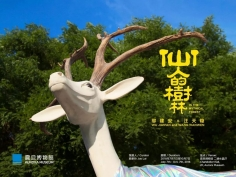 Wu Jian'an and Wang Tianwen: In The Mythical Forest